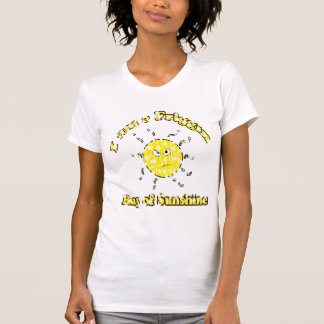 Rayo descolorado de Friggin de la camisa de la sol