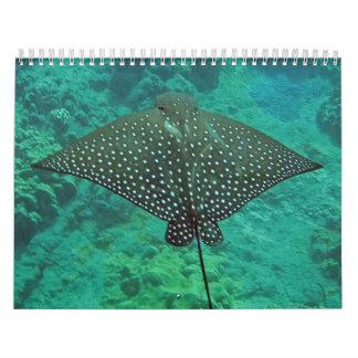 Rayos de Manta de Hawaii, anguilas y pulpo Calendario De Pared