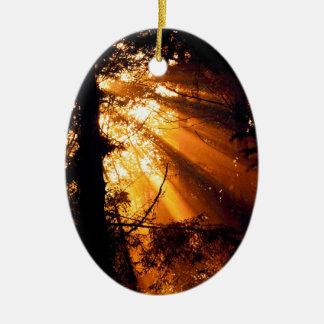 Rayos de sol místicos de los árboles olímpicos ornamento de navidad