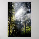 Rayos de sol poster