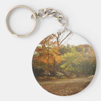 Rayos de Sun del otoño, Central Park, New York Llavero Redondo Tipo Pin