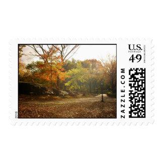 Rayos de Sun del otoño, Central Park, New York Sellos
