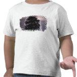 Rayos en el cielo detrás de un árbol camiseta