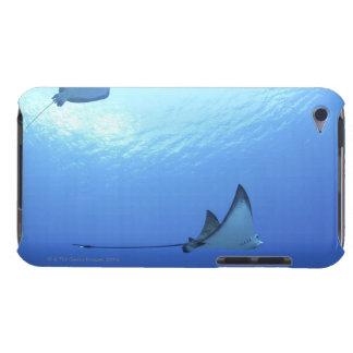 Rayos que nadan, Saipán, Northern Mariana Islands iPod Touch Fundas