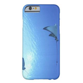 Rayos que nadan, Saipán, Northern Mariana Islands Funda De iPhone 6 Barely There