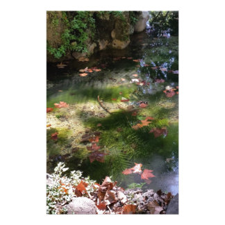 rays and leaves on water stationery
