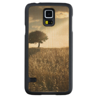 Rays of light break through the dramatic sky carved maple galaxy s5 slim case