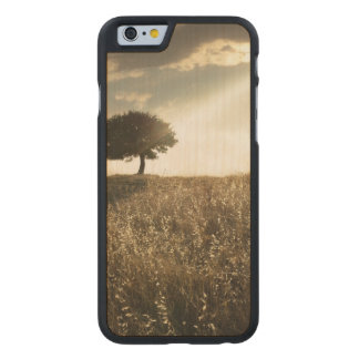 Rays of light break through the dramatic sky carved® maple iPhone 6 case