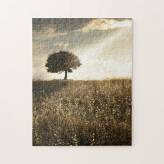 Rays of light break through the dramatic sky jigsaw puzzle