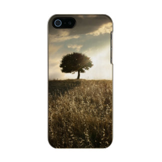 Rays of light break through the dramatic sky metallic phone case for iPhone SE/5/5s