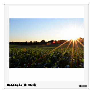 Rays over crops wall graphics