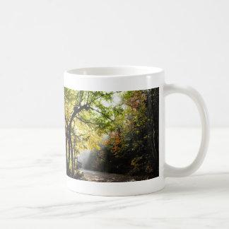 Rays Sunshine Shady Forest Canyon Ste-Anne QC Mug