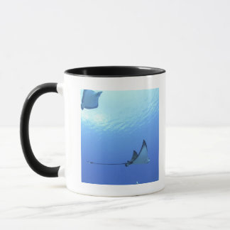 Rays swimming, Saipan, Northern Mariana Islands Mug