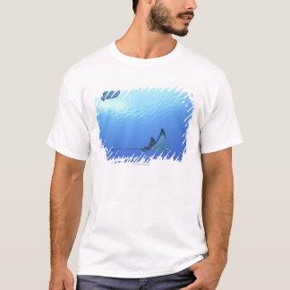 Rays swimming, Saipan, Northern Mariana Islands T-Shirt