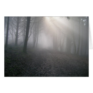 Rays Through Fog Greeting Cards