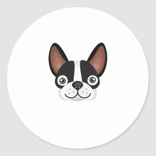 Raza de Boston Terrier - mi oasis del perro Etiquetas
