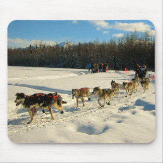 Raza de perro de trineo del rastro de Iditarod Alfombrillas De Ratones