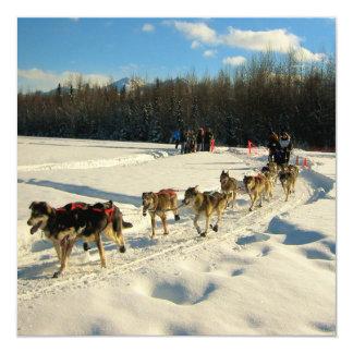Raza de perro de trineo del rastro de Iditarod Invitación 13,3 Cm X 13,3cm