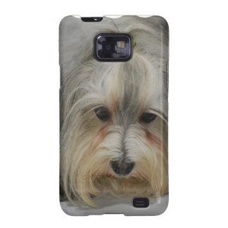 Raza del perro de Havanese Galaxy S2 Carcasas