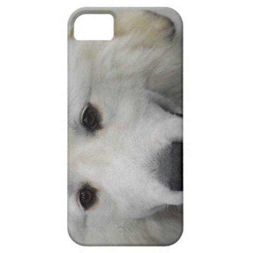 Raza del perro de los grandes Pirineos iPhone 5 Carcasa
