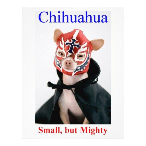 Raza pequeña pero poderosa de la chihuahua tarjeta publicitaria