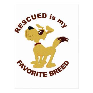 Raza rescatada del perro tarjeta postal