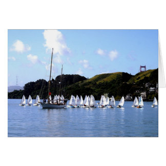 Raza San Francisco Bay del EL Toro Felicitacion