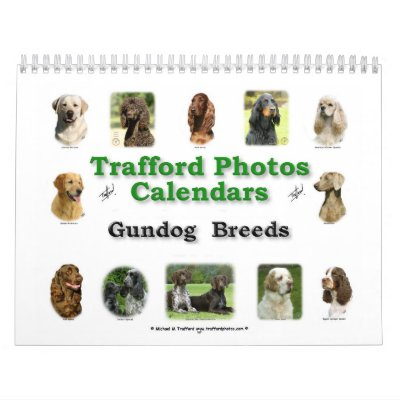 Razas de Gundog Calendarios De Pared