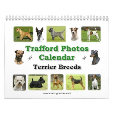 Razas de Terrier Calendario De Pared