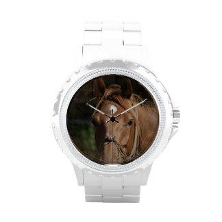 Razas del caballo relojes de mano