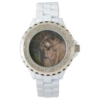 Razas del caballo relojes de pulsera