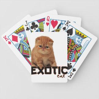 razas exóticas del gato baraja cartas de poker