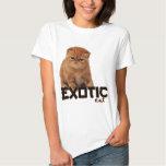 razas exóticas del gato camisas
