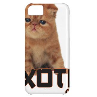 razas exóticas del gato funda para iPhone 5C