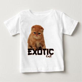 razas exóticas del gato polera