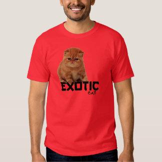 razas exóticas del gato poleras