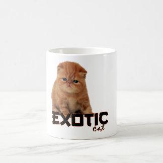razas exóticas del gato taza básica blanca