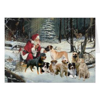 Razas múltiples del perro de la tarjeta de Navidad