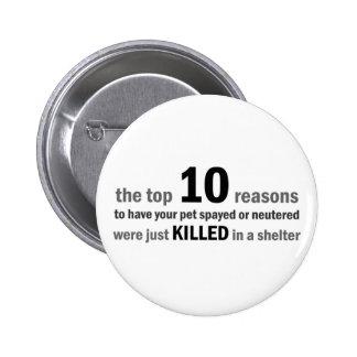 Razones del top 10 para spay o para neutralizar pin