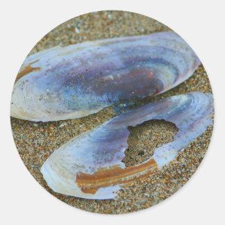 Razor Clam Shell, Oregon Stickers