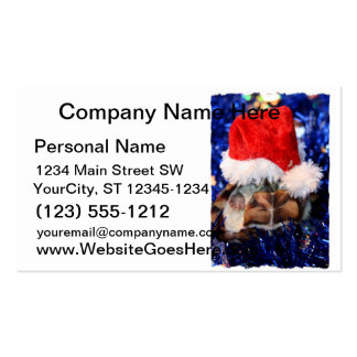 Razorbacked Musk Turtle, Santa Hat over head Business Card Templates