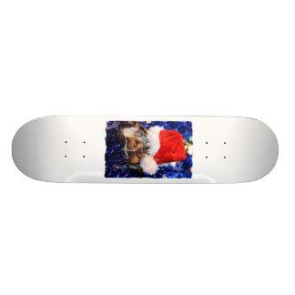 Razorbacked Musk Turtle, Santa Hat over head Skateboard Deck