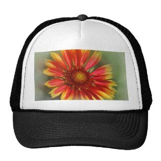 Razzle Dazzle Hats