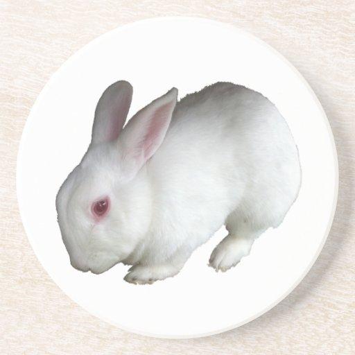 Rbbit blanco posavasos para bebidas