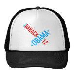 Re-elect Barack Obama 12 Hat