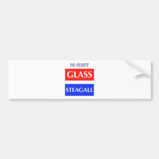 RE-ELECT Glass Steagall Bumper Sticker