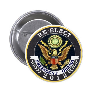 Re-Elect Obama Pinback Button