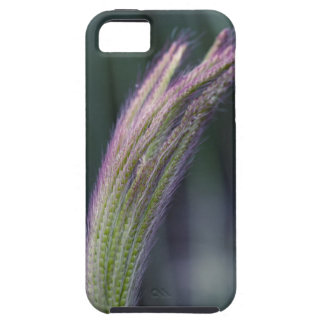 Reach iPhone 5 Covers
