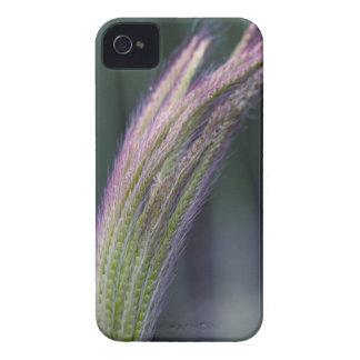 Reach iPhone 4 Case
