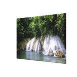 Reach Falls, Port Antonio, Jamaica Canvas Prints